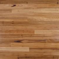 Outback Flooring - Australian Beech Rustic