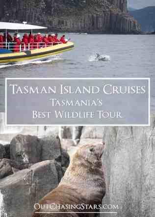 Tasman Island Cruises Pin