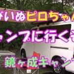 たびいぬピロちゃんのキャンプに行くぞ!!#01