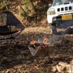 ジムニーで行く!林道最奥でデイキャンプ