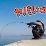 【遠征】離島に潜むモンスター!牡蠣のかぶせ釣りで超大物コブダイを狙え!