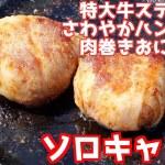 2019  肉を食いまくるソロキャンプ 秋葉神社前キャンプ場