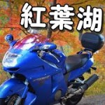 【モトブログ】#92 紅葉ツーリング2020!!後編【CBR1100XX】