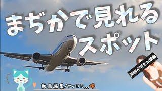 空港ツーリング ✈大阪国際空港【千里川土手】