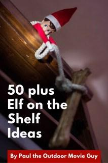 50 plus Elf on the Shelf Ideas, dog bone