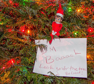 Elf on the shelf is back in the tree