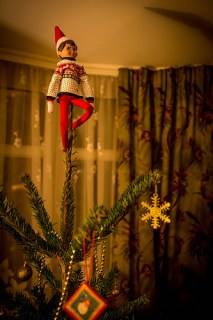 Elf on the shelf on top of the Christmas Tree