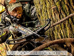 Best Cheap Crossbows