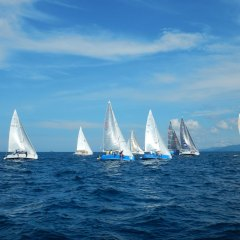 Regatta Sailing in Thailand