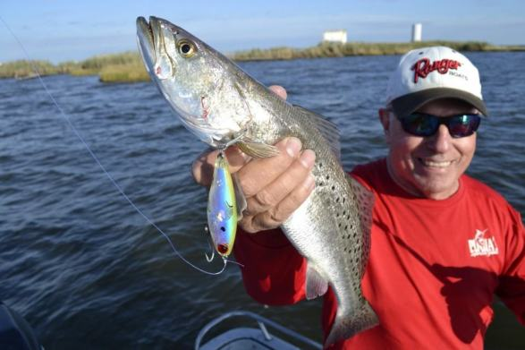 6 great speckled trout fishing tips how to catch for Speckled trout fishing lures