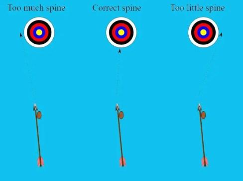 arrow spine