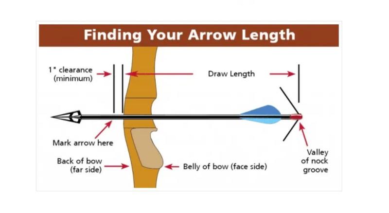 how to cut carbon arrow - draw length and arrow length
