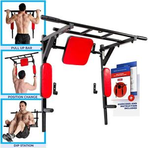 Wall Mounted Pull Up Bar and Dip Station with Vertical