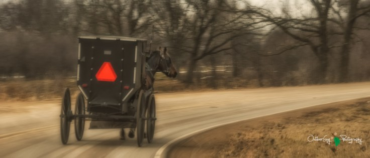 Blair Amish Project 137