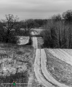 Farm Field Road