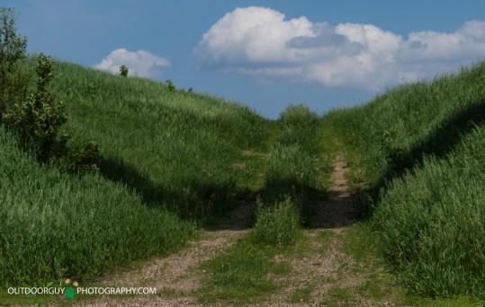 Grassy Passage