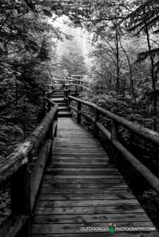 Cascade River Park walk-way