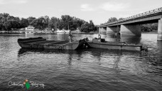 OutdoorGuyPhotography-5983