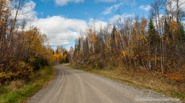 OutdoorGuyPhotography-3219