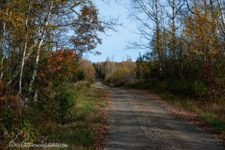 OutdoorGuyPhotography-6899