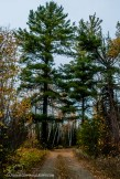OutdoorGuyPhotography-6955