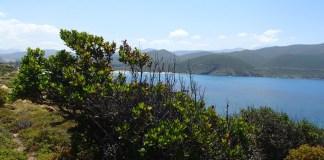 Küstenwanderung Korsika