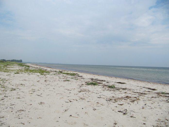 Maasholm Strand