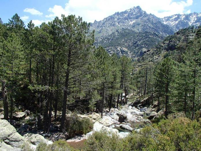 Monte Cinto Korsika