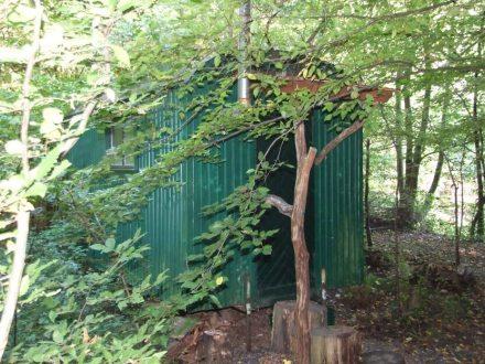 Wildpark Wildwald Vosswinkel