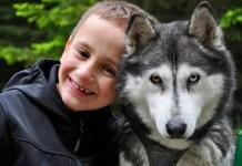 Husky Erlebnis Kinder