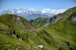 Endlose-Singletrails-im-Wallis-Bike-Verbier-Outdoormind
