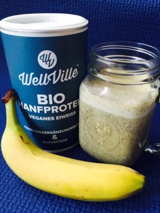 WellVille Handprotein Superfood