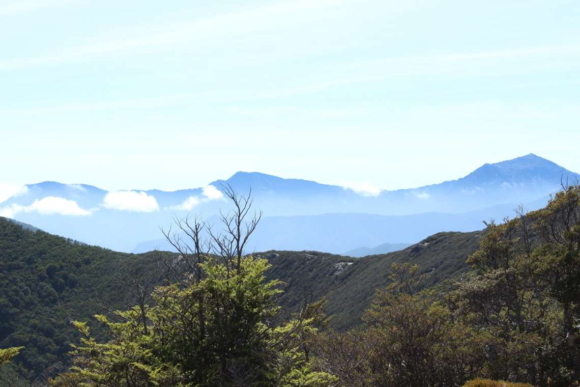 Bergkamm Te Araroa Neuseeland