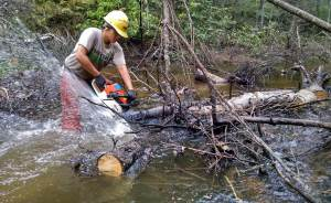 Clearing a river trail of flood and debris