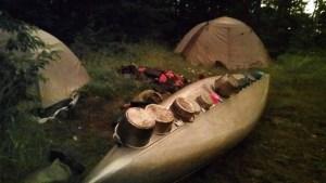 Bear Canoe National Forest