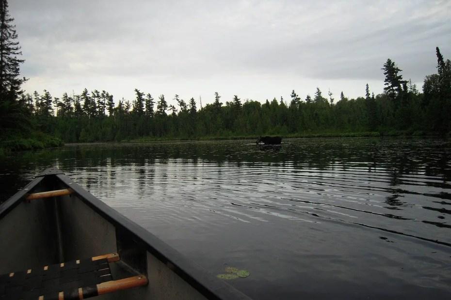 Canoeing BWCA