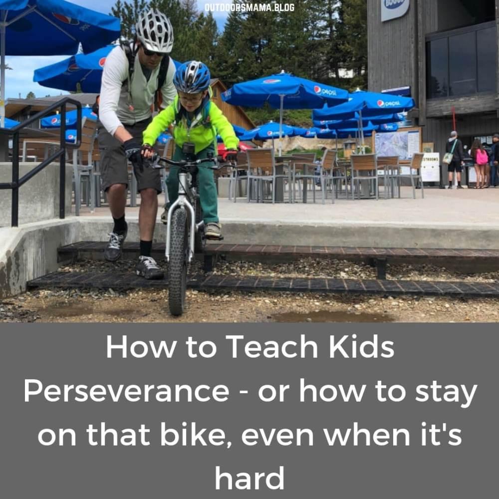 blog - perseverance 1