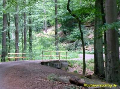 Durch den Wald Richtung Hirschberg