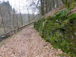 Waldschluchtenweg - 009