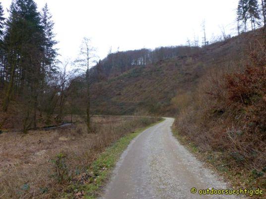 Waldschluchtenweg - 014