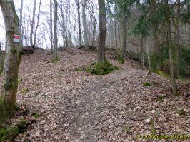 Waldschluchtenweg - 027