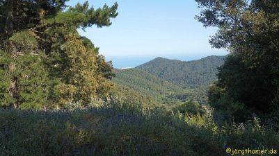 0037 Downhill Montenegre DSC05656