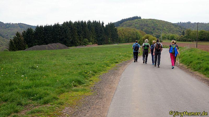 0054 Wandermarathon Donnersberg DSC05178