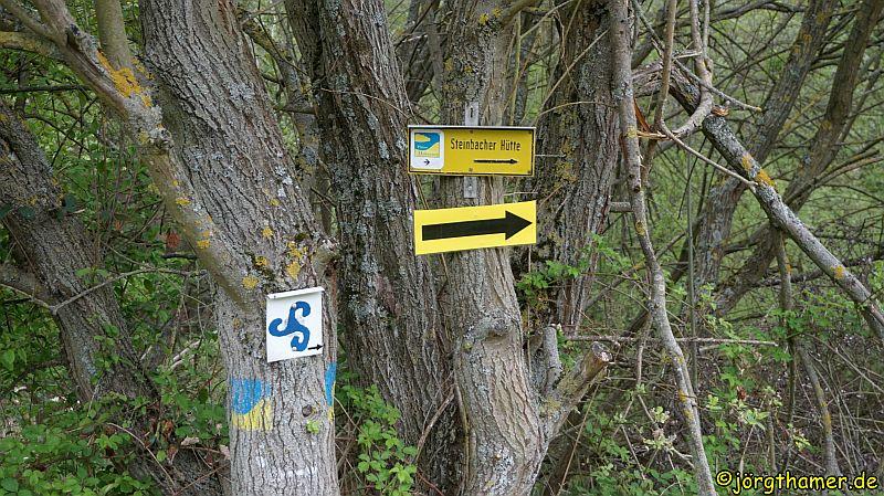 0122 Wandermarathon Donnersberg DSC05246