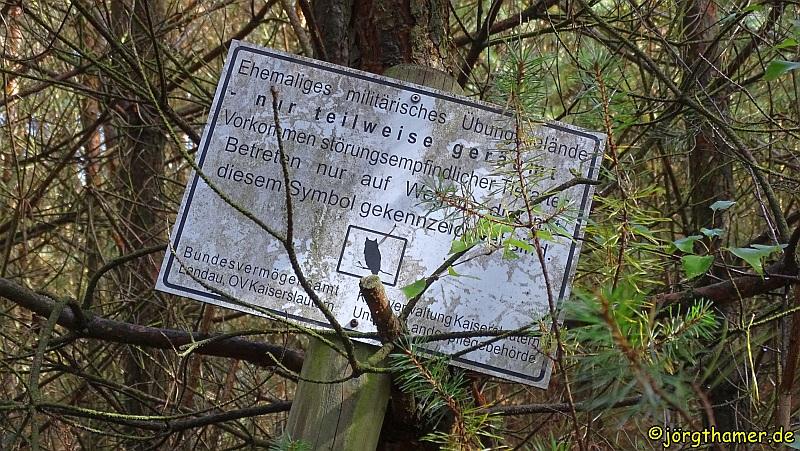 Das Naturschutzgebiet Mehlinger Heide war früher Truppenübungsplatz