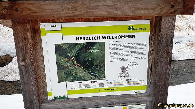 GWunderwald Davos
