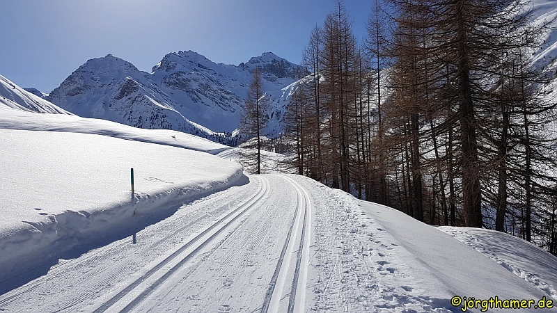Langlauf in Davos - Sertig