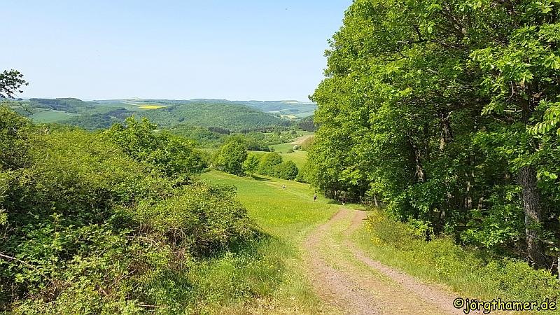 Wandermarathon Donnersberg - Wegführung