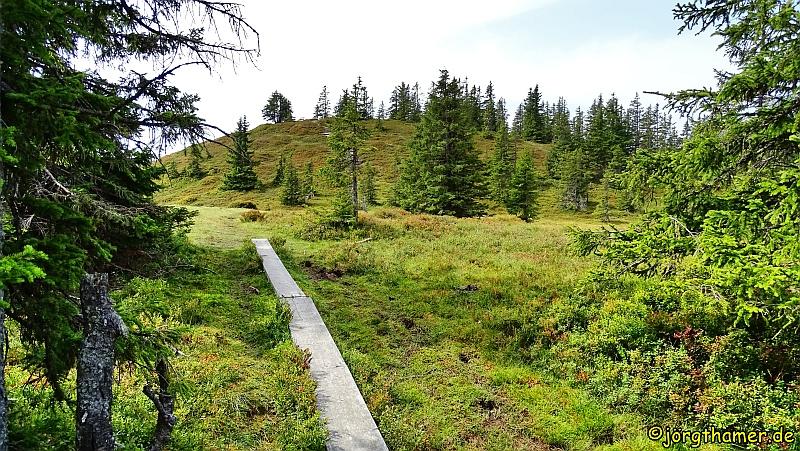 Hochmoor am Bernkogel