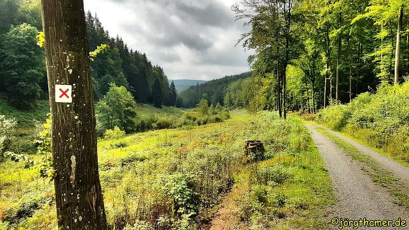 Wandern im Spessart